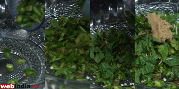 chillies, coriander leaves, mint leaves, ginger-garlic paste