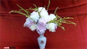 Face Tissue Flowers