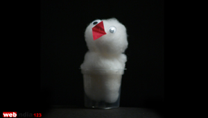 Cotton Chick