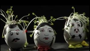 Cute Eggshell Planters