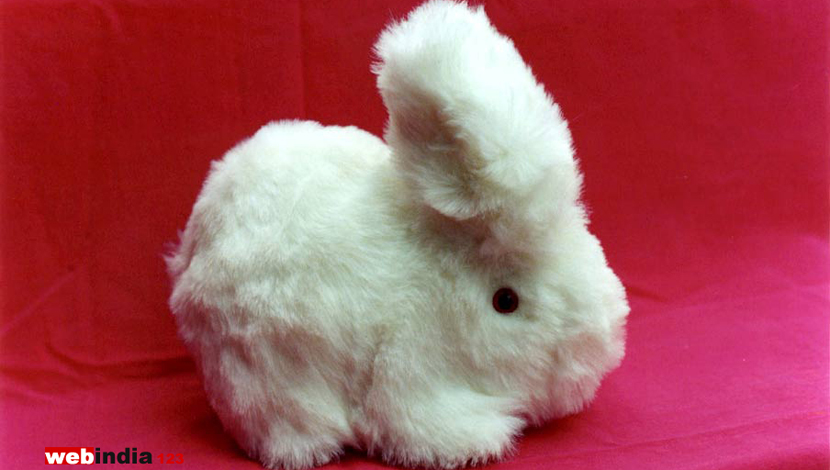 Soft Toy - Rabbit
