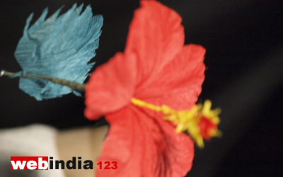 How To Make Hibiscus Flower From Crepe Paper Flowers Healthy