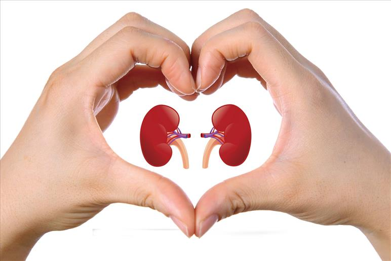 Kidney Diseases and Diet | Dr. Vinod Kumar K