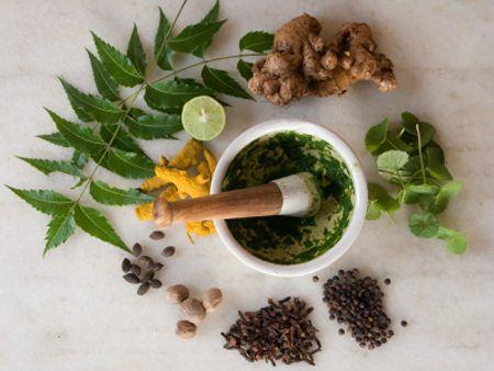 5 herbs to boost a healthy digestive system