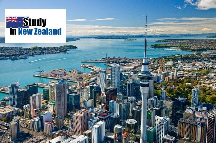 Study, Work and Live in New Zealand